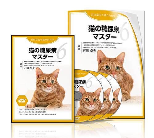 猫の糖尿病マスター│医療情報研究所DVD