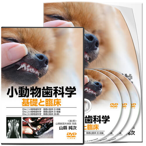 小動物歯科学 基礎と臨床│医療情報研究所DVD